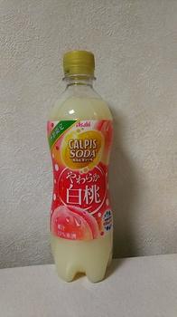 DSC_5507.JPG